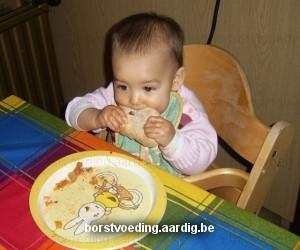 Borstvoeding en bijvoeding
